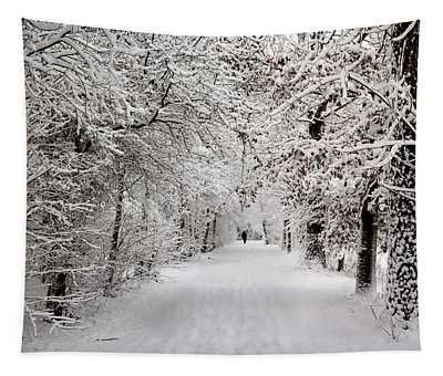 Winter Walk In Fairytale  Tapestry