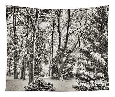 Winter Zauber 03 Tapestry