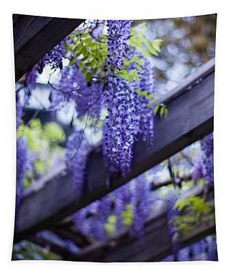 Wisteria Beams Tapestry