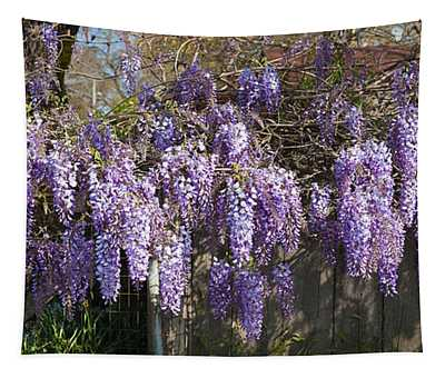 Wisteria Flowers In Bloom, Sonoma Tapestry