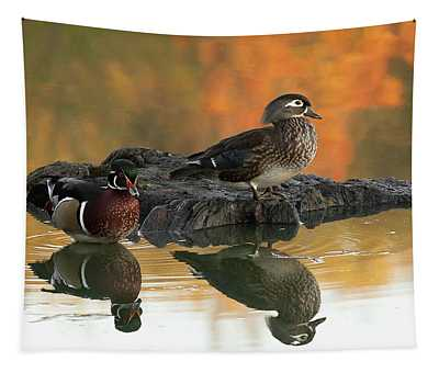 Wood Ducks Tapestry