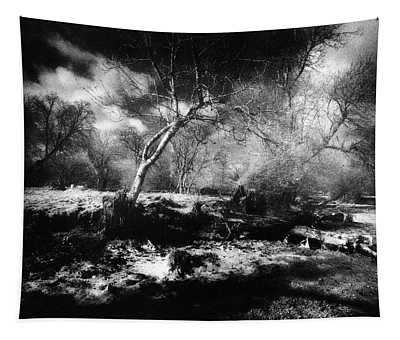 Woods, County Meath, Ireland Tapestry