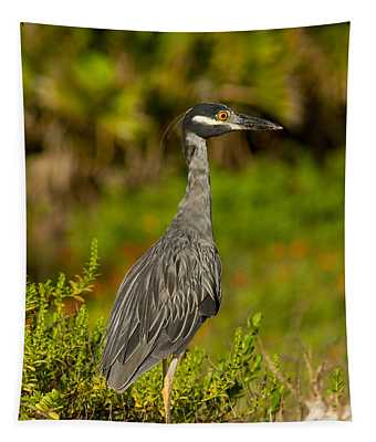 Yellow Crowned Night Heron Dune Watch Tapestry