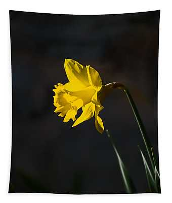 Yellow Daffodil Tapestry