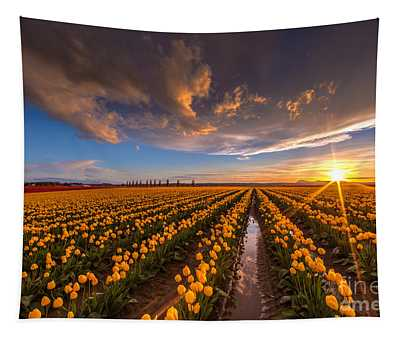 Yellow Fields And Sunset Skies Tapestry