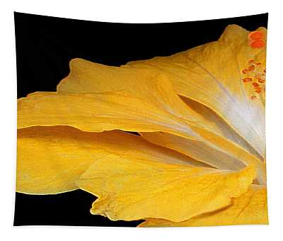 Yellow Hibiscus. Detail Tapestry