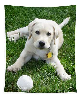 Yellow Lab Puppy Got A Ball Tapestry