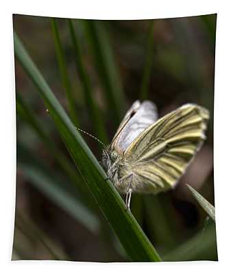 yellow winged butterfly   Leif Sohlman Tapestry