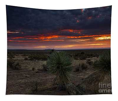 Yucca Sunset Tapestry
