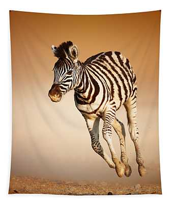 Zebra Calf Running Tapestry