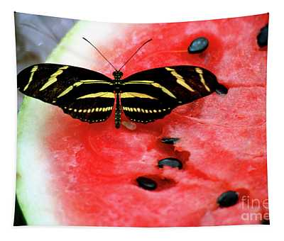 Zebra Longwing Butterfly On Watermelon Slice Tapestry
