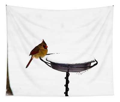 Cardinal At Feeding Station Tapestry