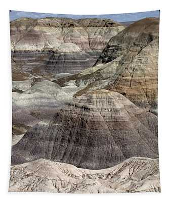 Petrified Forest Landscape 3 Tapestry