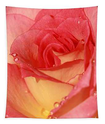 Wet Rose Tapestry