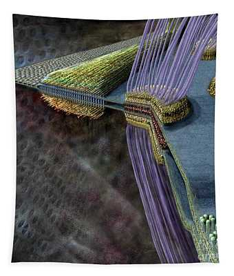 Animal Cell Junctions Tapestry