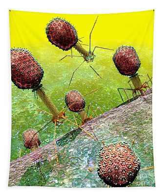 Bacteriophage T4 Virus Group 2 Tapestry