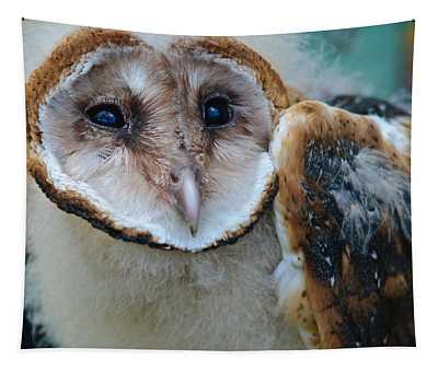 Barn Owlet Tapestry