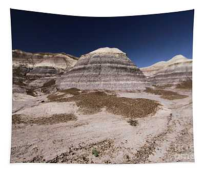Blue Mesa At Petrified Forest Tapestry