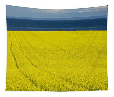 Canola Field, Guernsey Cove, Prince Tapestry