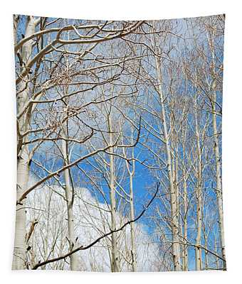 Cloudy Aspen Sky Tapestry