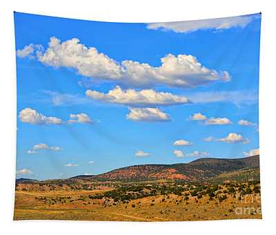 Cloudy Wyoming Sky Tapestry