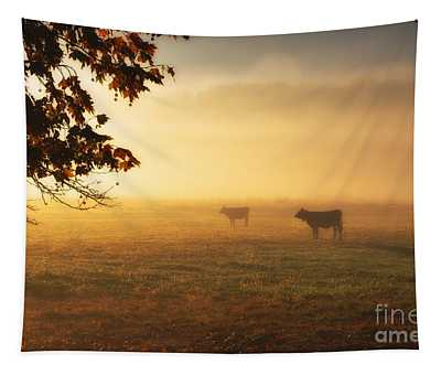 Cows In A Foggy Field Tapestry