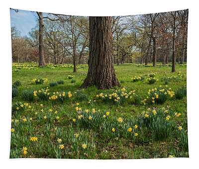 Daffodil Glade Number 2 Tapestry