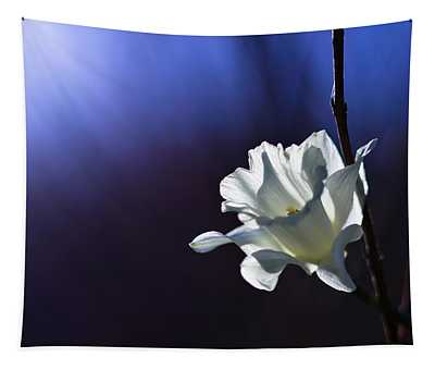 Daffodil Light Tapestry