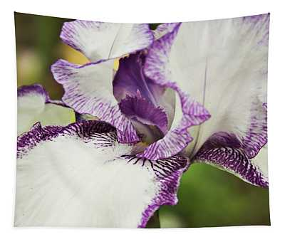 Delicate Ruffles 2 Tapestry