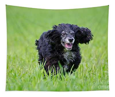 Dog Running On The Green Field Tapestry