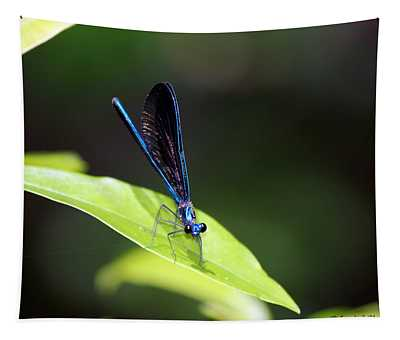 Dragonfly Fly Tapestry