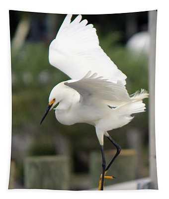 Egret Ballet Tapestry