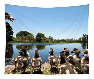 Egyptian Geese Tapestry