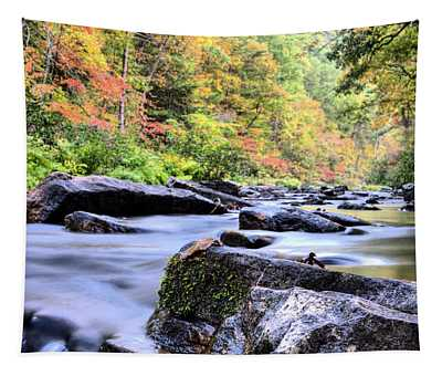 Falling Into Autumn Tapestry by JC Findley