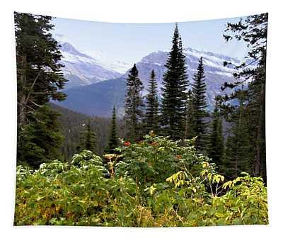 Glacier Scenery Tapestry