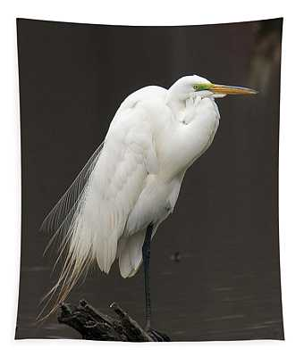 Great Egret Resting Dmsb0036 Tapestry