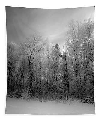 Impressionist Snow Tapestry