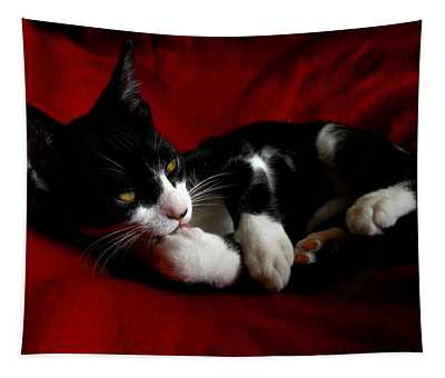 Kitten On Red Take Two Tapestry