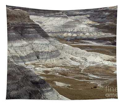 Landscape Petrified Forest Tapestry