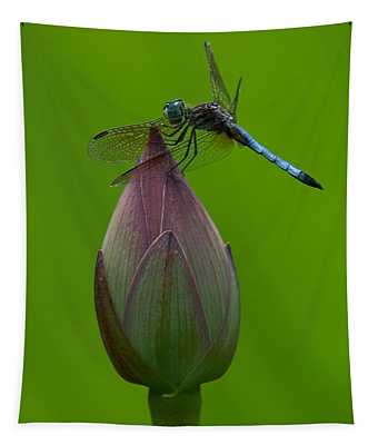 Lotus Bud And Blue Dasher Dragonfly Dl007 Tapestry