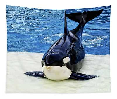 Majestic Killer Whale Tapestry