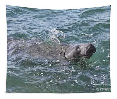 Manatee At Ponce Inlet Tapestry