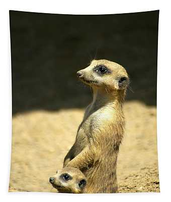 Meerkat Mother And Baby Tapestry
