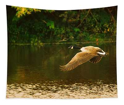 Midmorning Launch Tapestry
