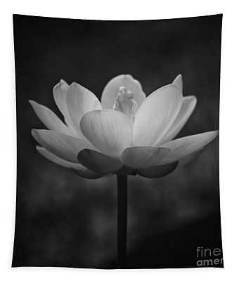 Morning Lotus Tapestry