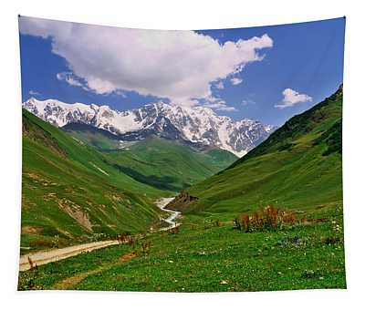 Mountain Valley Tapestry