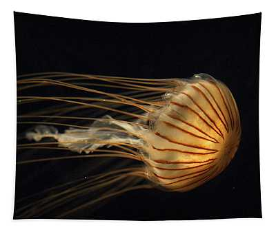 Tapestry featuring the photograph Northern Sea Nettle  by Hiroya Minakuchi
