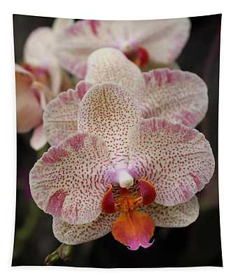 Orchid Perspective Tapestry