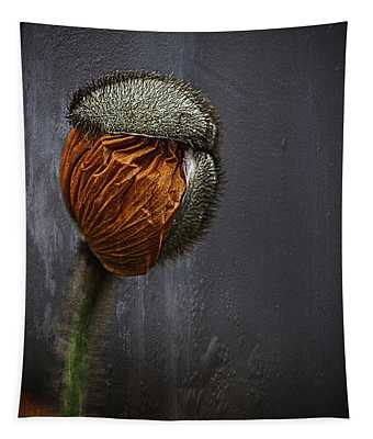 Out Of Darkness Grows Flowers Tapestry by Jessica Manelis