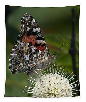 Painted Lady Butterfly Din049 Tapestry